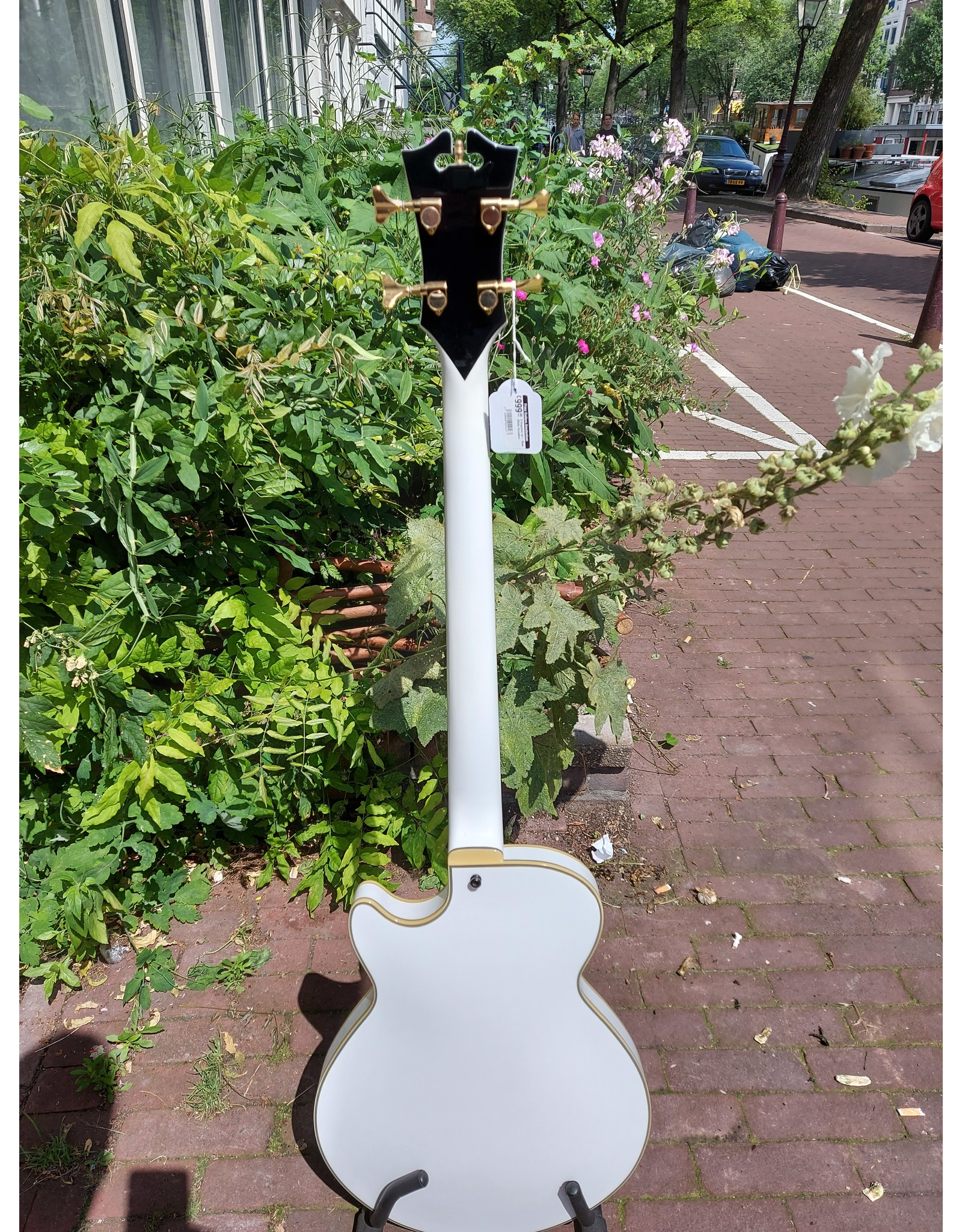 D'Angelico Ex-  Bass White  Occasion