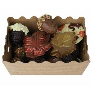Bonvanie chocolade Herfstchocolade gemixt, diverse maten