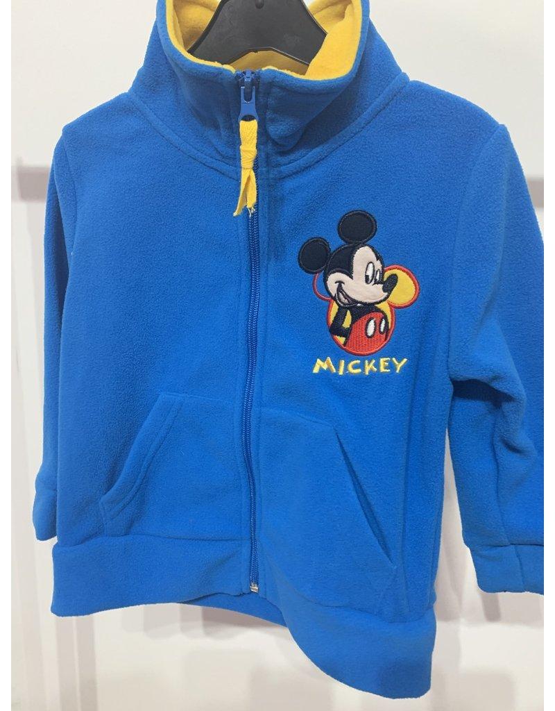 Polar Mickey