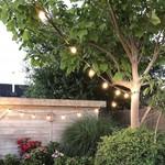 Ampoules guinguette LED à filament blanc chaud et chaleureuses - 2 et 3 watts