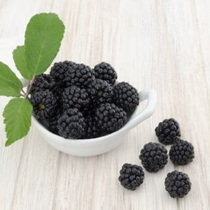 The Flavor Apprentice Boysenberry  Flavor (15 ml)