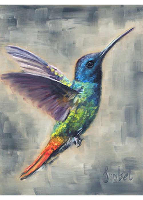 Hummingbird rainbow