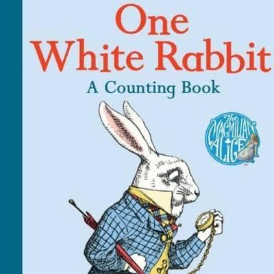 One White Rabbit - A Counting Board Book