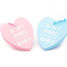 Dont Panic Its only a baby wooden heart