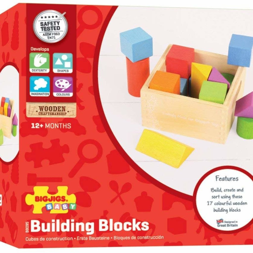 Bigjig Bigjigs Building Blocks