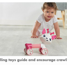 Tiny Love Tiny Love Rolling Toy Florence