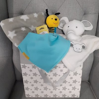 Neutral Baby Large Gift Bag