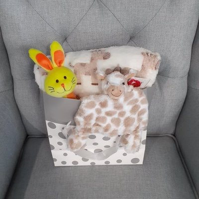 Neutral Baby Small Gift Bundle
