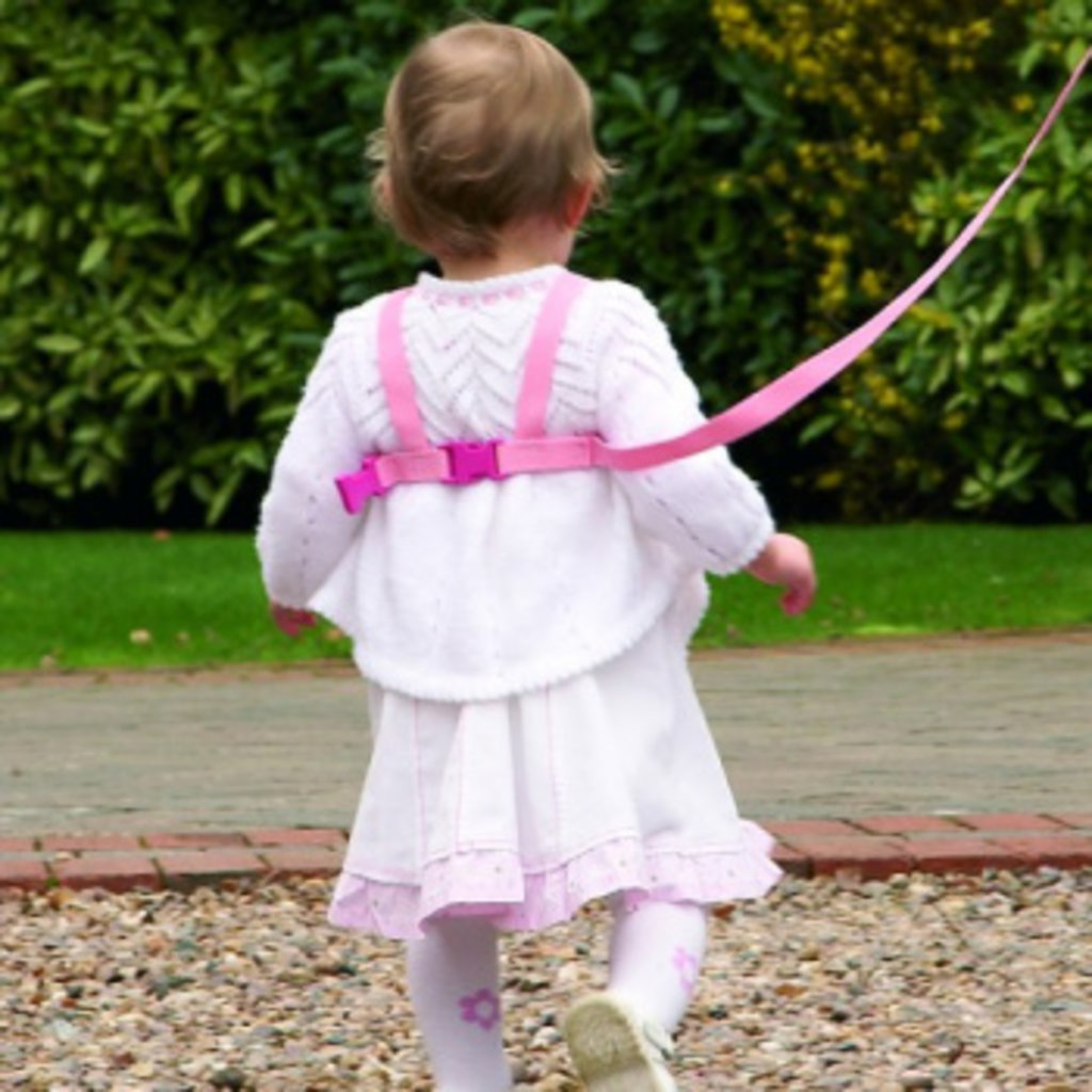 Clippasafe Clippasafe Harness & Reins Pink