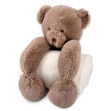Plush Bear Toy & White Blanket