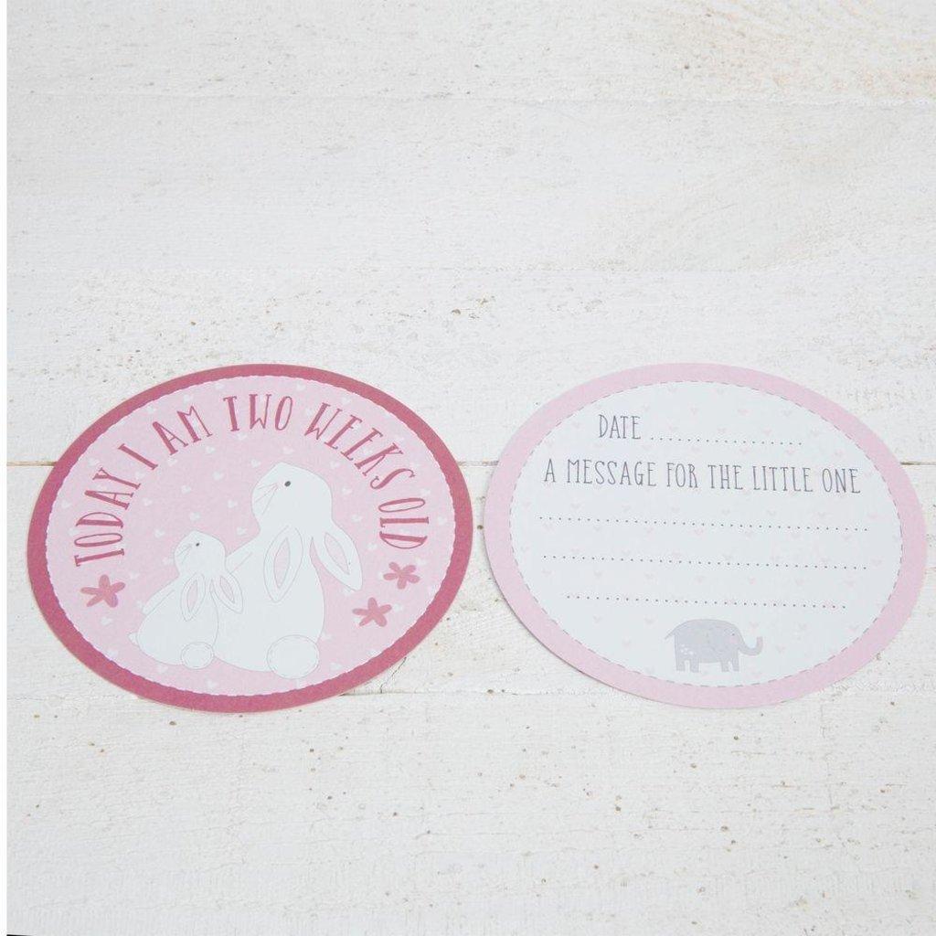 Petit Cheri Petit Cheri Milestone Cards- Pink