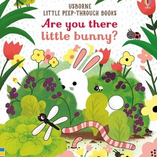Usborne Are You There Little Bunny