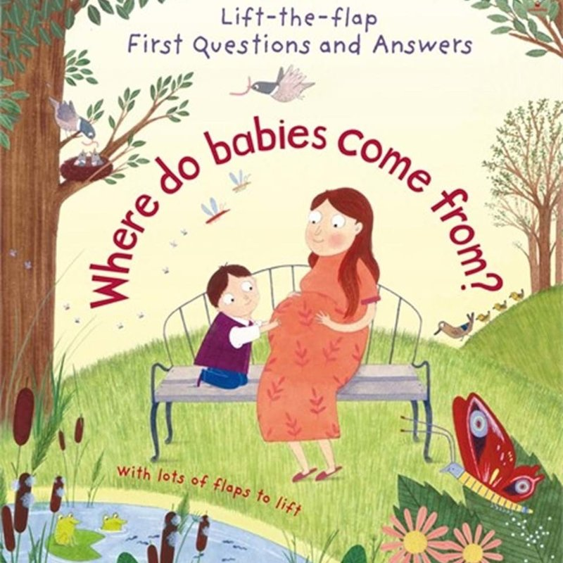 Usborne Where Do Babies Come From