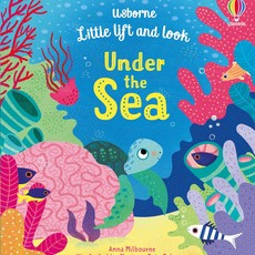 Usborne Little lift and look - Under the Sea