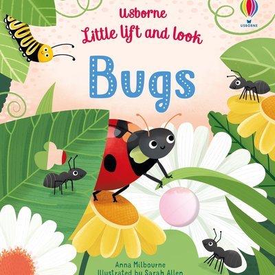 Usborne Little lift and look Bugs