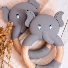 Smiley Eileey Assorted Teething Ring w/ Wooden Ring