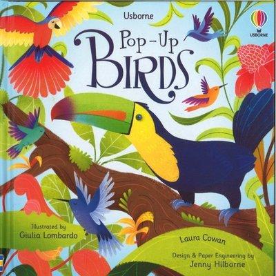 Usborne Pop-Up Birds