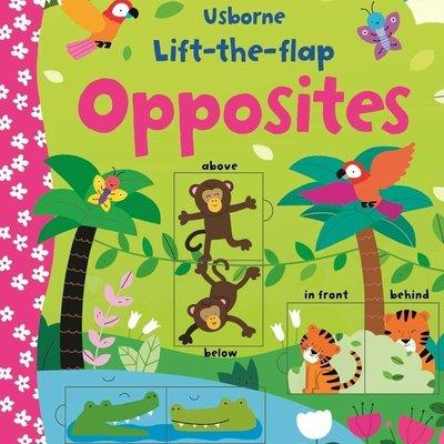 Usborne  Lift The Flap Opposites