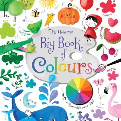 Usborne Big Book Of Colours