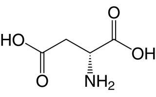 Asparaginezuur