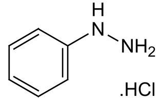 Fenylhydrazine