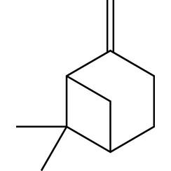 β-Pinen rein