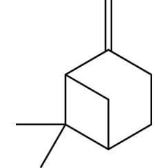 β-Pineno puro