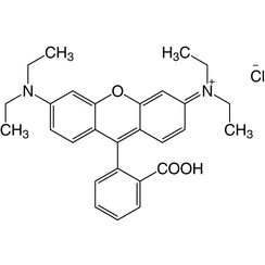 Rhodamine B (C.I. 45170)