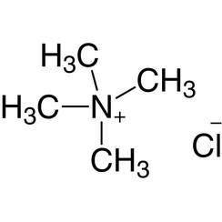 Tetramethylammoniumchloride ≥98 %, for synthesis