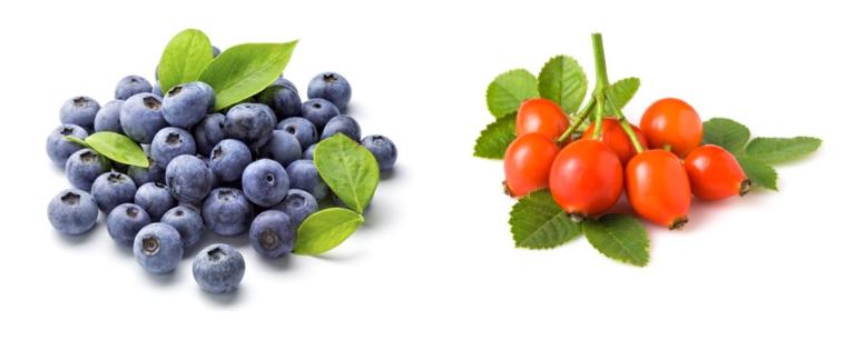 Ingrediënten vitamine C druppels