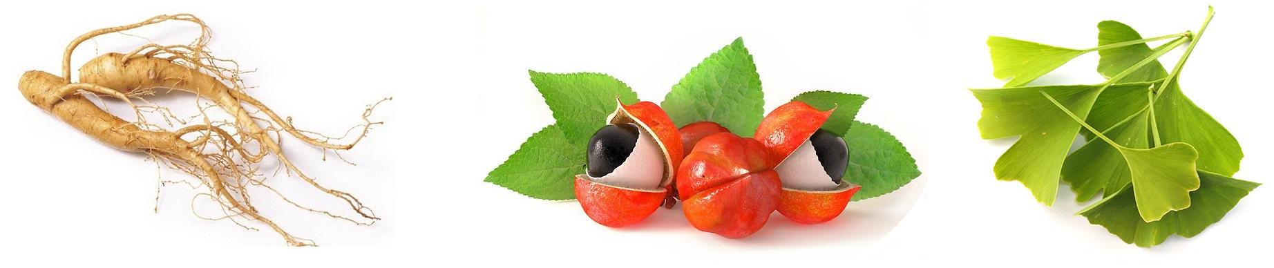 ginseng guarana ginkgo capsules vitaminbottle