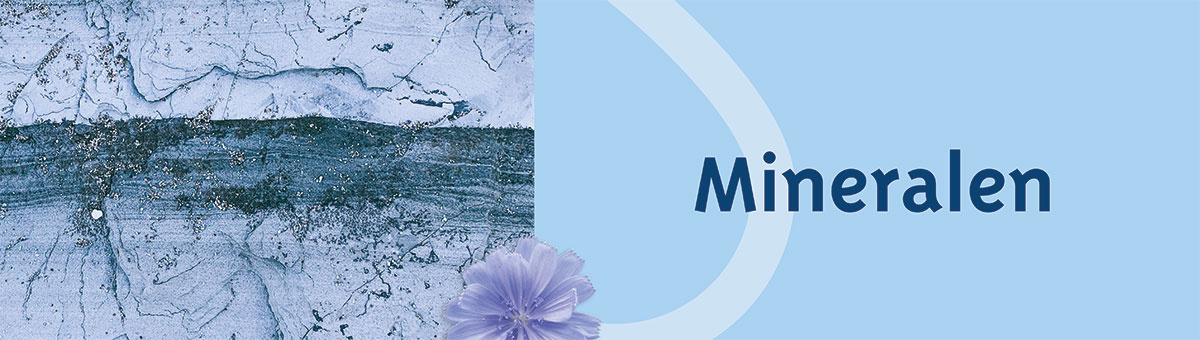 Blog over Mineralen VitaminFit