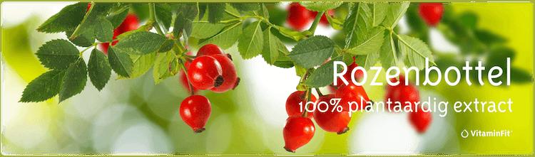 Vitamine C rozenbottel vitaminfit