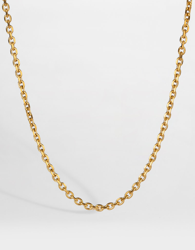 Northern Legacy nl cable necklace - gold