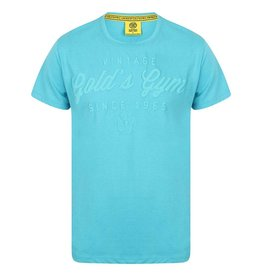 Gold's Gym Embossed Vintage Style T-shirt - Blue Marl