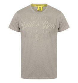 Gold's Gym Embossed Vintage Style T-shirt - Grey Marl