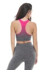 Gold's Gym Ladies Seamless Crop Top - Pink/Grey Marl