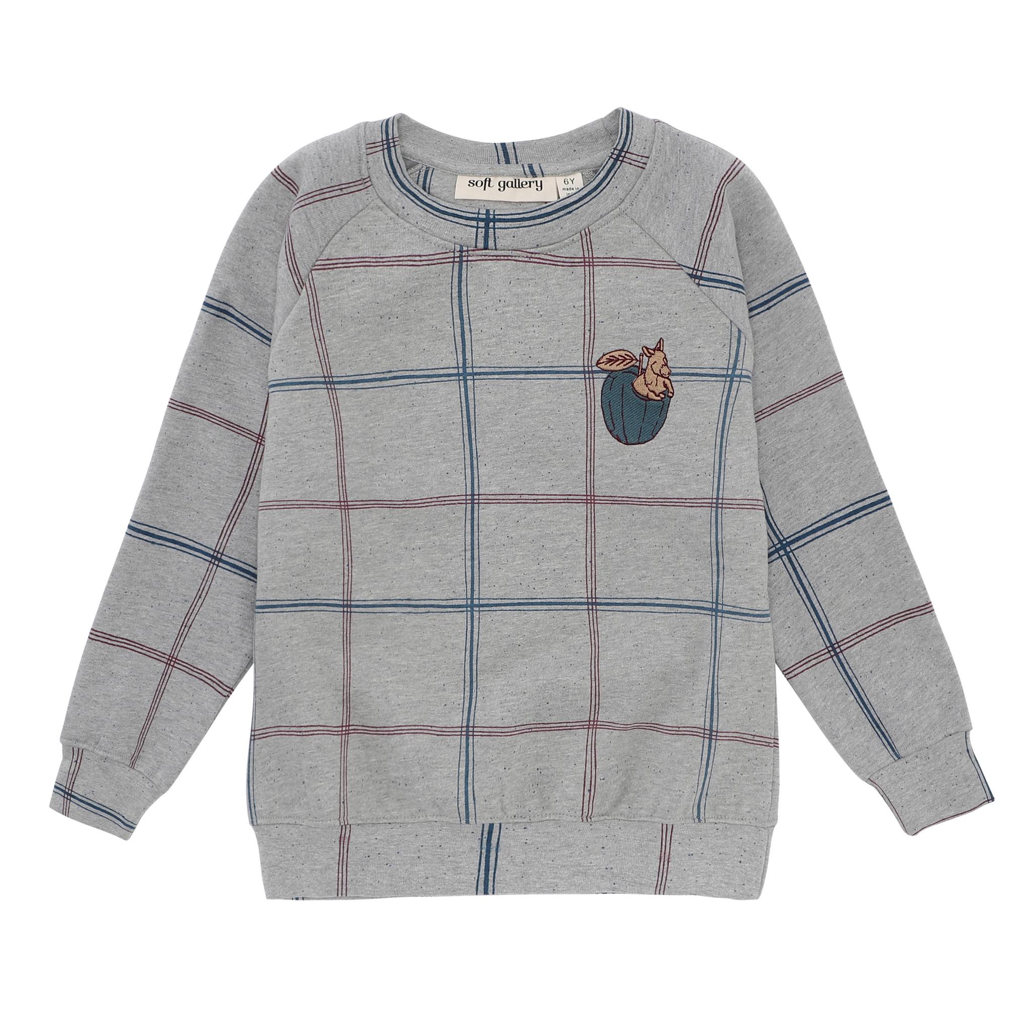Chaz Sweatshirt-1