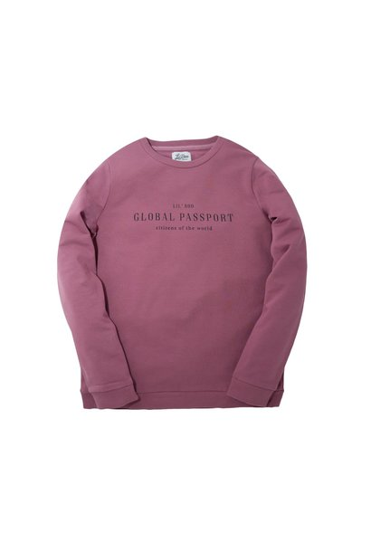 Global Passport - CItizen of the World Sweatshirt