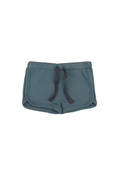 Swim shorts - Balsam Blue