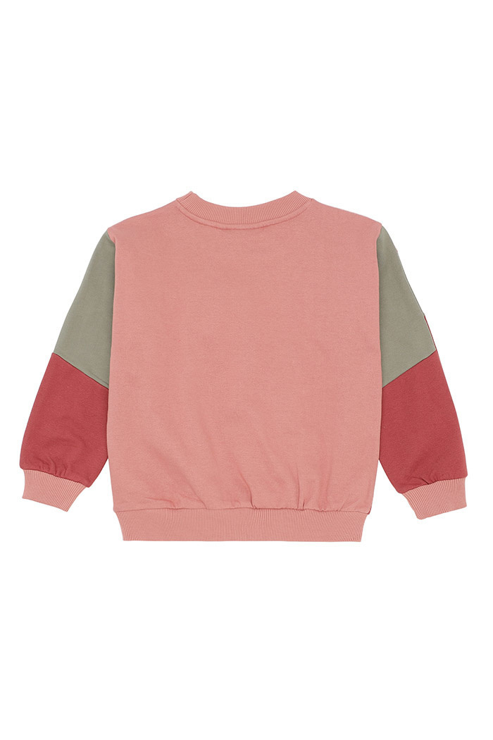 Garly sweatshirt - Rose Dawn-2