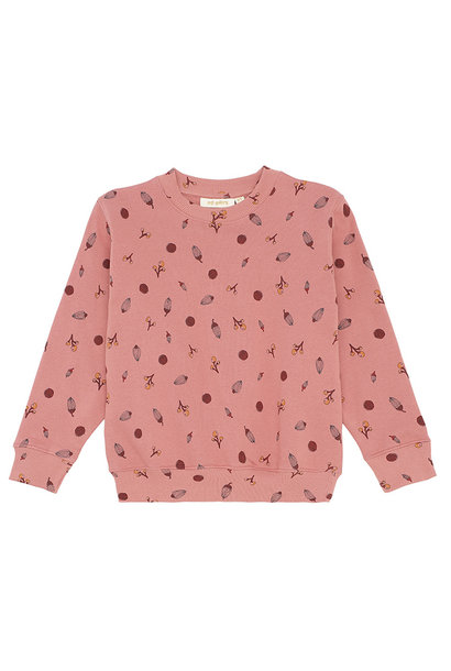 Baptiste sweatshirt - Rose Dawn