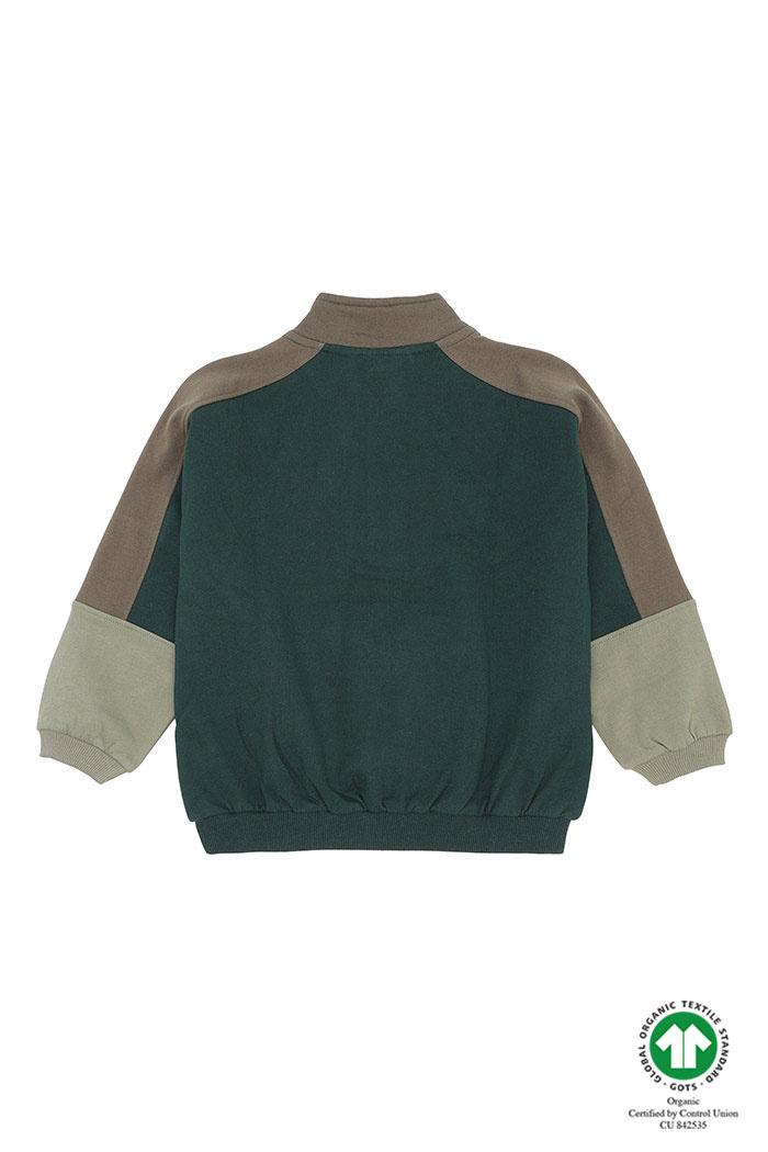 Gemini sweatshirt - Pine Grove-2