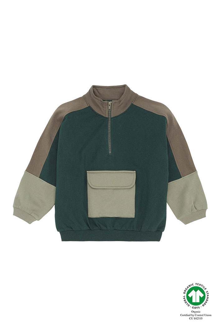 Gemini sweatshirt - Pine Grove-1