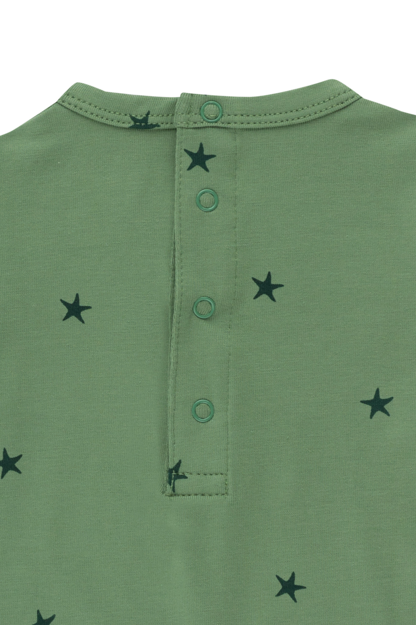 Starfish body - Green / Ink Blue-2