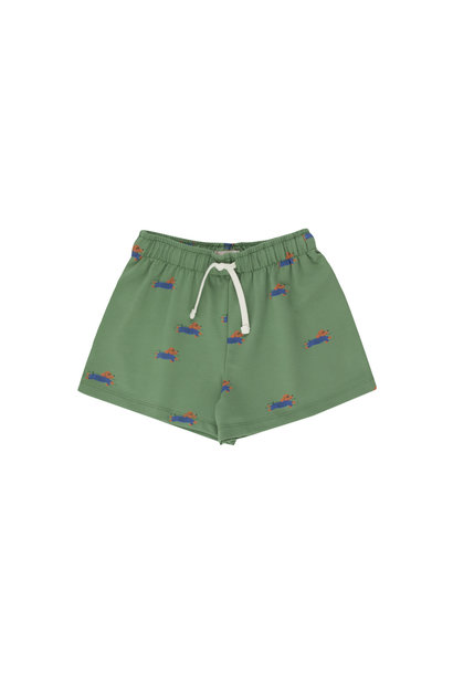 Doggy paddle short - Green / Iris Blue