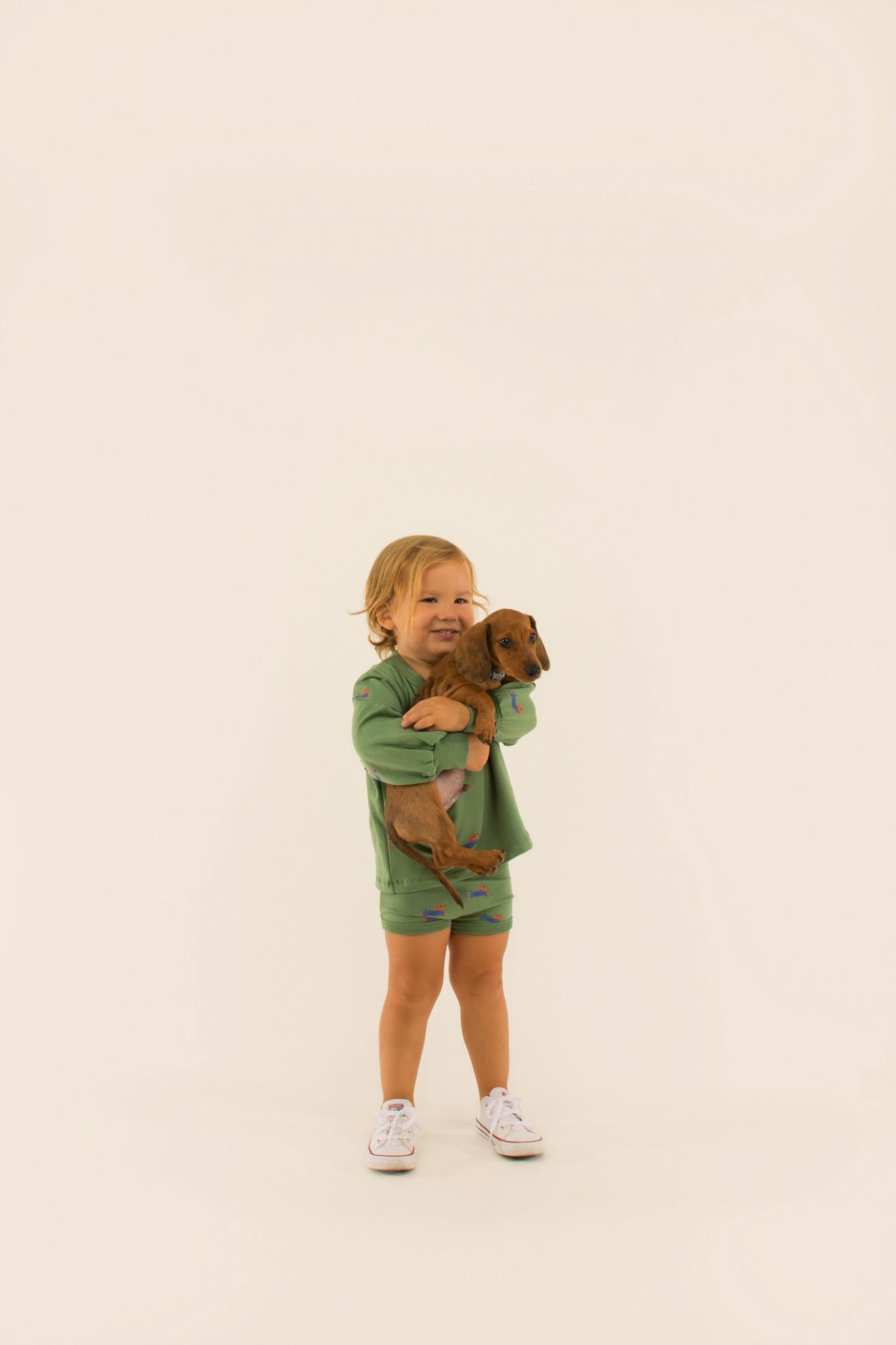 Doggy paddle sweatshirt - Green / Iris Blue-2