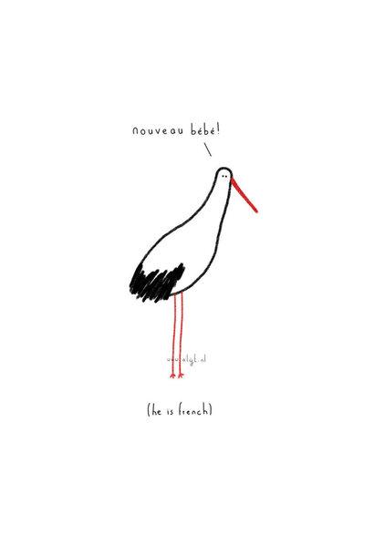 Copy of Ansichtkaart - Pakjesvogel