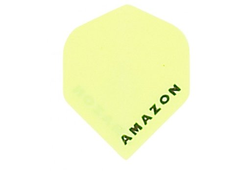 Amazon Amazon flight Geel