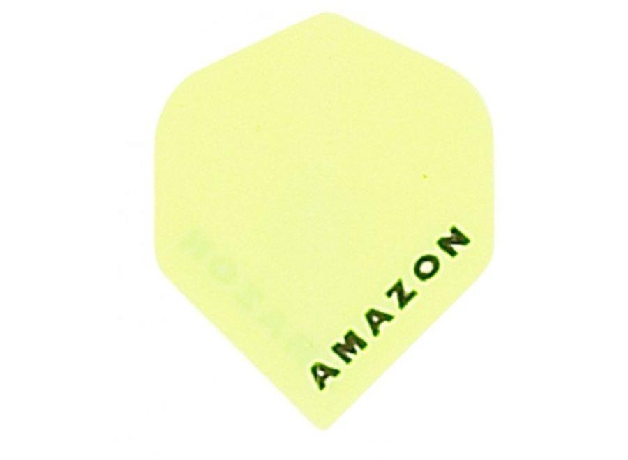 Amazon flight Geel